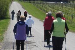 Wine tour strolling